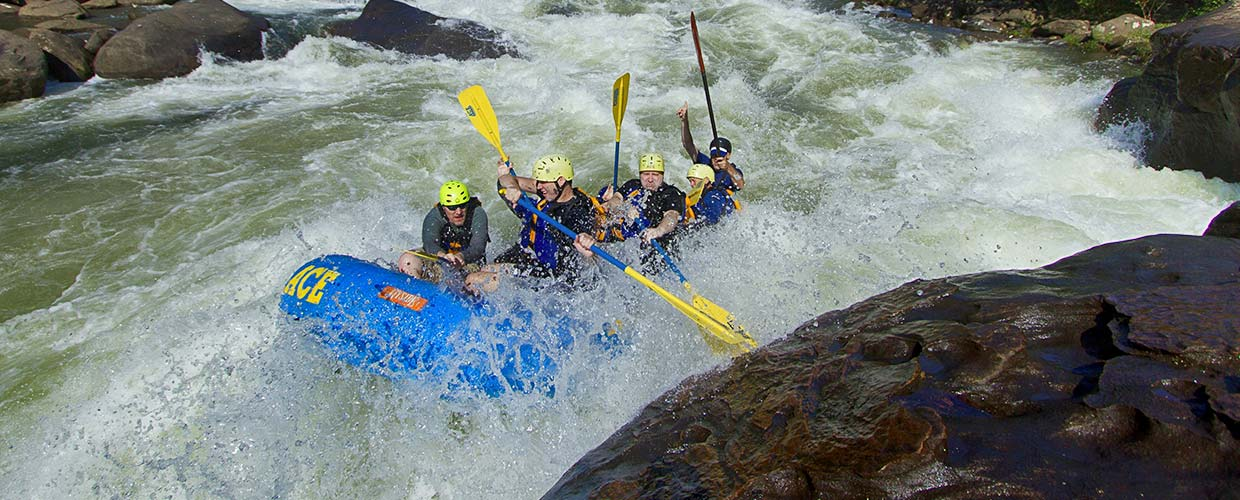 fall-gauley-special-trips-overview-banner.jpg