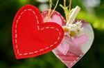 heart-1450361_thumb.jpg