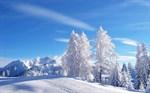 winter-wallpaper-4_thumb.jpg